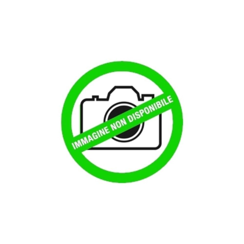 Artgeist Carta da parati Focus on dandelion