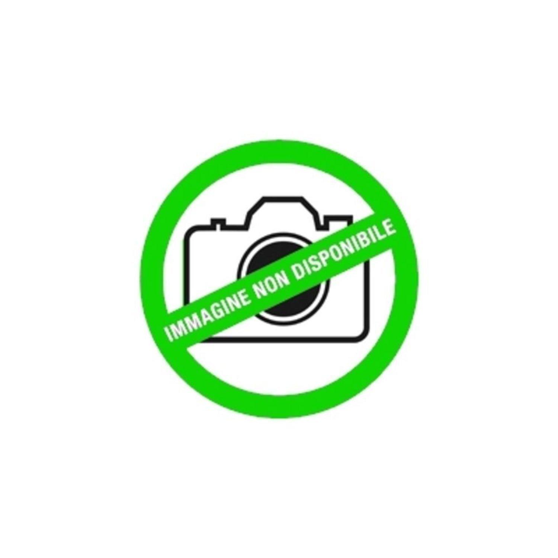 Feeby quadro con cornice naturale Rana su una foglia verde